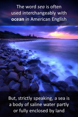 Etymology - back
