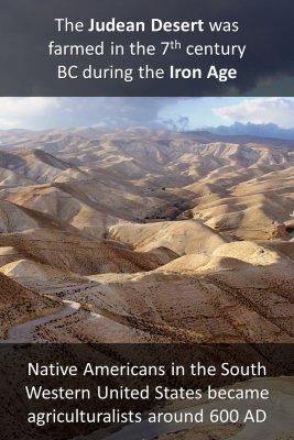 Desert farming - back