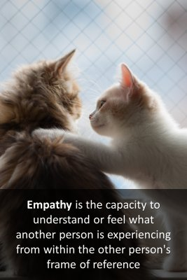 Empathy's origin micro-learning cards