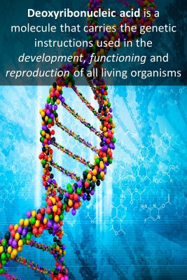 What is DNA micro-learning cards