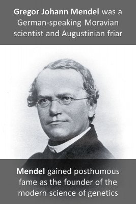 Gregor Mendel knowledge cards