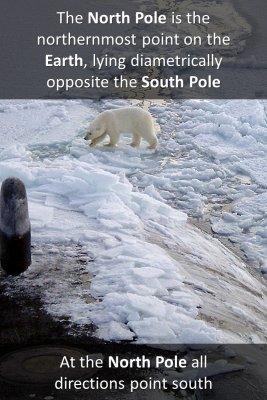 North Pole - back