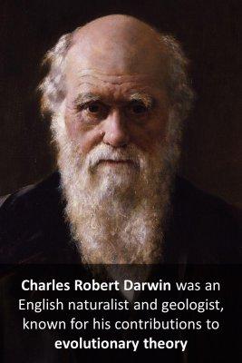Darwin micro-learning cards