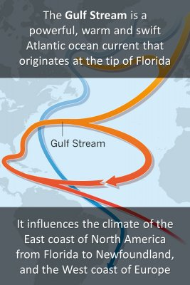 The Gulf Stream - front
