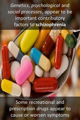 Schizophrenia in public perception bite sized information