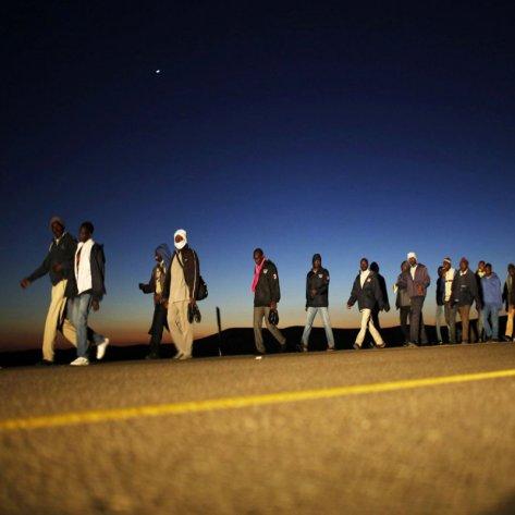 History of Human Migration