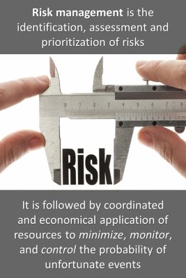 What is Risk Management micro-learning cards