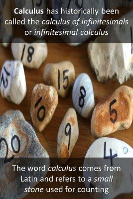 Calculus origination - back