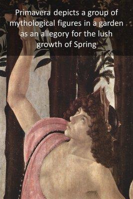 Primavera - back