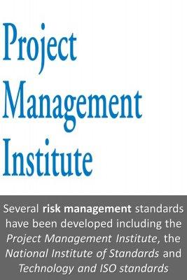 Risk management standards bite sized information