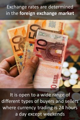 Foreign Exchange Market 1/2 micro courses