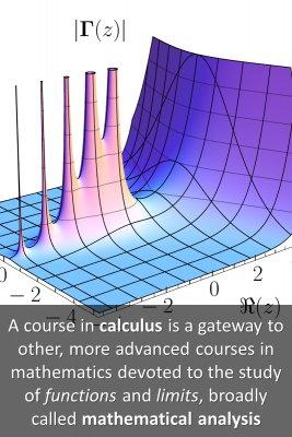Calculus origination micro courses