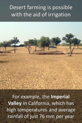 Desert farming knowledge cards