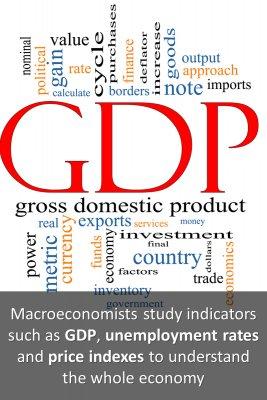 Macroeconomists' studies bite sized information
