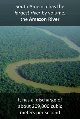 The Amazon knowledge cards
