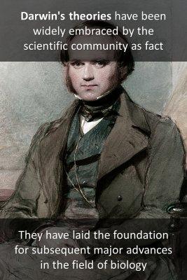 Darwin Species - back