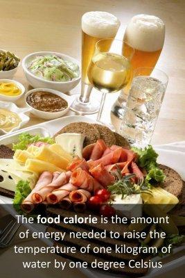 The calorie micro courses