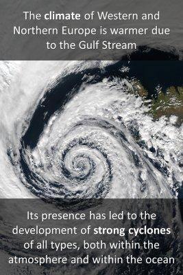The Gulf Stream - back