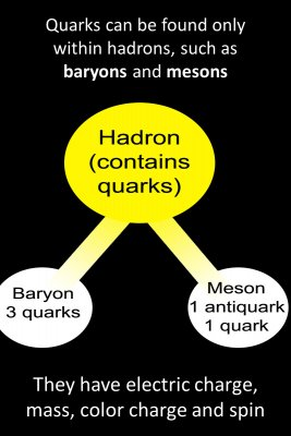 A quark - back
