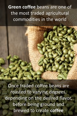 Coffee beans - back