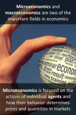 Microeconomics vs Macroeconomics micro courses