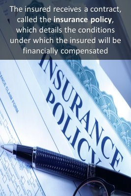 Insurance Conditions - back
