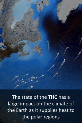 THC - back