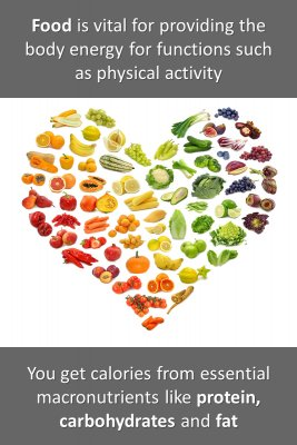 Food and macronutrients knowledge cards