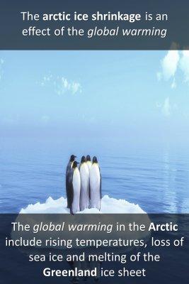 Studies on North Pole - back